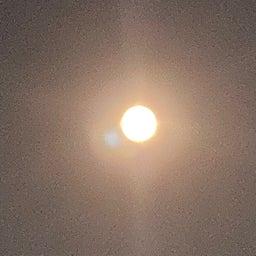 画像 中秋の名月… の記事より 2つ目