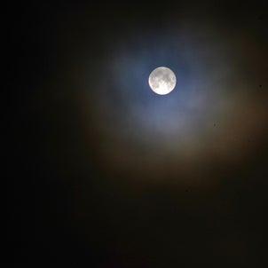 月光浴がてらにの画像