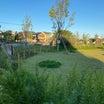 四谷さくら公園で夕方散歩