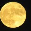 2021年・中秋の名月の画像