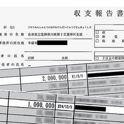 画像 【拡散希望】 パンダハガー河野太郎が、ファミリー企業から6700万円の献金を受けていた! の記事より 5つ目