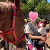 お馬さんにびっくり!!代々木ポニー公園に行ってきました。の画像