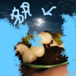 画像 中秋の名月☆ の記事より 4つ目
