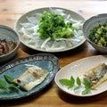 きのう釣ってきたスズキの腹身の塩焼きとカルパッチョ、マダイとエソの刺し身の漬け、大根葉炒めもの。