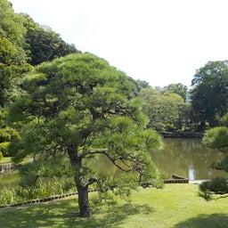 画像 夏日!鮮やか緑の日本庭園でたっぷりヨガ体験【写真・動画】 の記事より 3つ目
