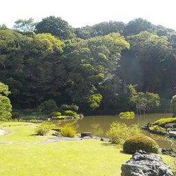 画像 夏日!鮮やか緑の日本庭園でたっぷりヨガ体験【写真・動画】 の記事より 2つ目