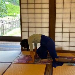 画像 夏日!鮮やか緑の日本庭園でたっぷりヨガ体験【写真・動画】 の記事より 10つ目