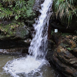 画像 水の音とマイナスイオンで心が癒やされた の記事より 5つ目