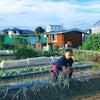 多摩スクワット ~自社農園ねこさんファーム編~の画像