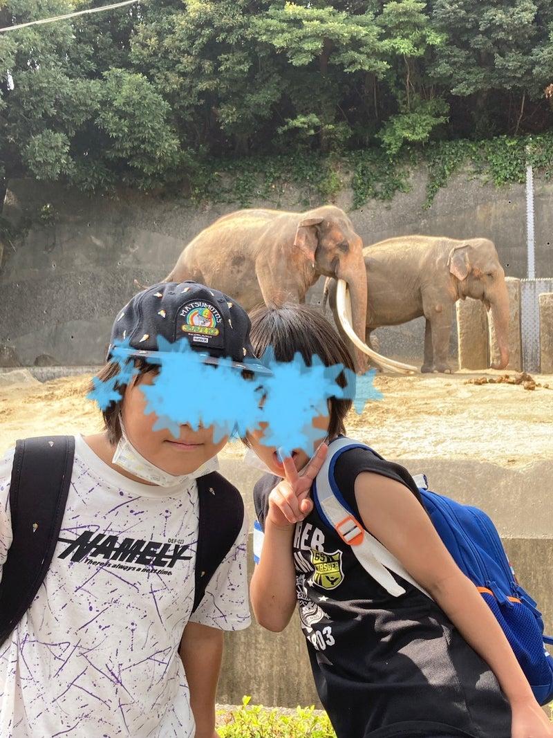 o1080144015007251056 - toiro平塚 9/23 金沢自然動物公園へ!