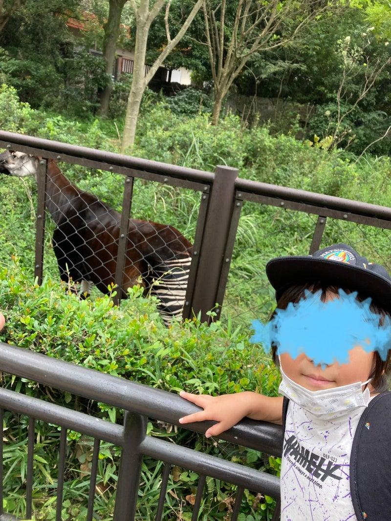 o1080144015007251066 - toiro平塚 9/23 金沢自然動物公園へ!