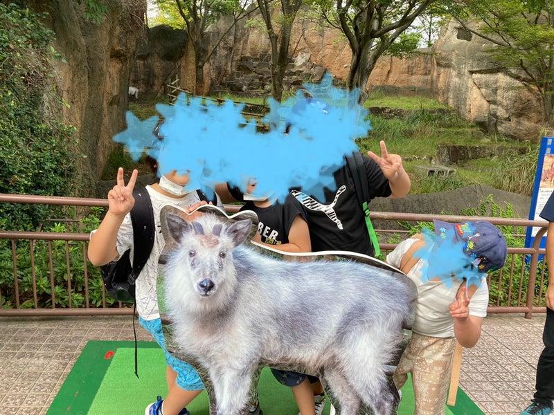 o1080081015007251059 - toiro平塚 9/23 金沢自然動物公園へ!