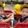 9月29日 0歳児クラスの活動の画像
