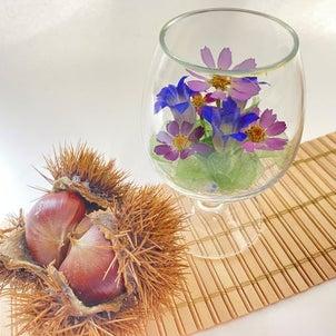 秋桜のボトルフラワーの画像