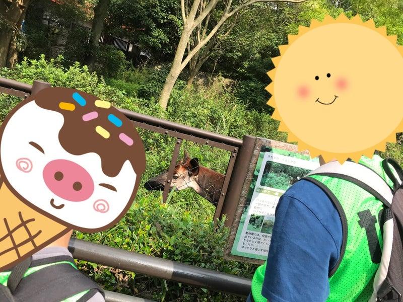 o1080081015009410116 - ♡9月25(土)toiro藤沢♡