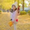 【募集】11月イチョウ&紅葉撮影会(宇都宮市など)の画像