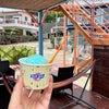 沖縄旅11・最南端名水~シーフロントの公園~ブルーシールアイスの画像