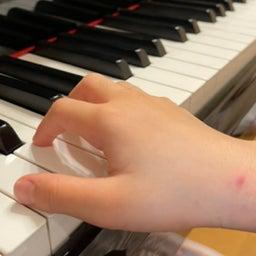 画像 プッシュポップで手の形、指の形を整えています の記事より 1つ目