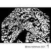 木の日_樫と蔦(2,272日目)の画像