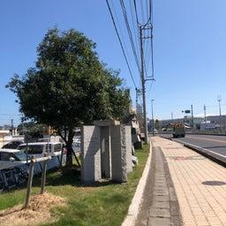 画像 日本にもジョージアガイドストーンが在る!!その2 の記事より 2つ目