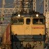 2021.10.9 75レ EF65 2067 神戸線の画像