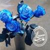 鮮やかな★ブルーローズ(青いバラ)の画像
