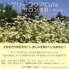 死別・離別した方向けわかちあいの会/春日井市11月6日(土)グリーフケアCafeの画像