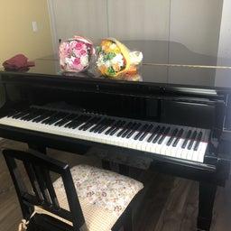 画像 わたしがピアノの道に進めた理由 の記事より