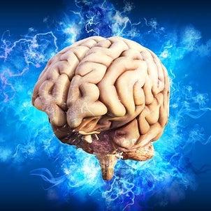 メンターは脳外科医のような存在ですの画像
