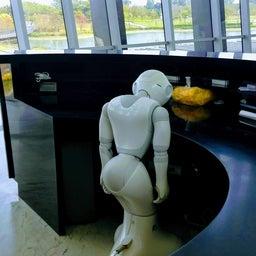 画像 ロボットと共に生活する の記事より
