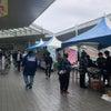 品川区イベント出展しました!の画像