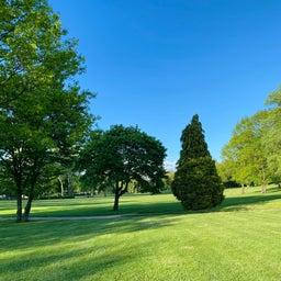 画像 人の芝生は青く見えるよね の記事より