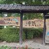 JR西日本、琵琶湖線、湖西線を乗り鉄!守山駅!の画像