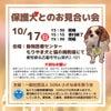 10月17日 もりやまお見合い会の参加犬が決定致しました!の画像