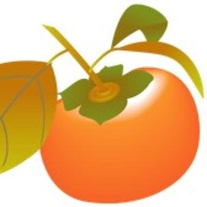 美里・柿の実こども園 保育園の画像