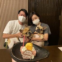 画像 2021.10.15 ご宿泊のワンちゃん達の笑顔☆ の記事より 7つ目