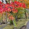 北海道紅葉スポット♡銀座のママ今週のパワースポットの画像