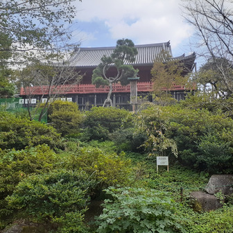 上野・谷中散策③(旧東京音楽学校奏楽堂など)