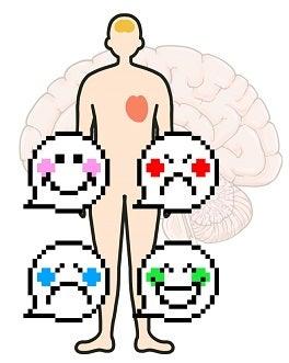 脳・心・大脳皮脂
