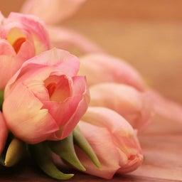 画像 【セッションレポ】花色数秘セラピー の記事より 3つ目