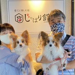画像 2021.10.16 ご宿泊のワンちゃん達の笑顔☆ の記事より 10つ目