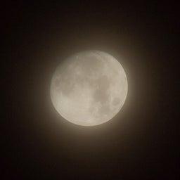 画像 「Fingerprint File」今夜は十三夜 欠けた月を楽しむ日本独自の風習 の記事より 2つ目