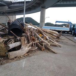画像 牛深の漁師さんたちの環境保全協議会による海ゴミ回収~ の記事より 19つ目