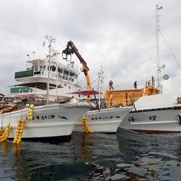画像 牛深の漁師さんたちの環境保全協議会による海ゴミ回収~ の記事より 13つ目