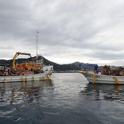 画像 牛深の漁師さんたちの環境保全協議会による海ゴミ回収~ の記事より 17つ目