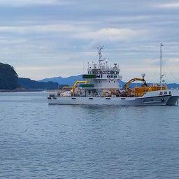 画像 牛深の漁師さんたちの環境保全協議会による海ゴミ回収~ の記事より 21つ目