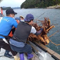 画像 牛深の漁師さんたちの環境保全協議会による海ゴミ回収~ の記事より 1つ目