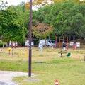 文化記念公園では芝刈りが行われています!