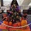 <名古屋営業所のHドライバーさん>町はハロウィンの画像