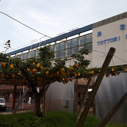 画像 今日はあかりの日!鳥取駅!JR西日本、山陰本線! の記事より 2つ目